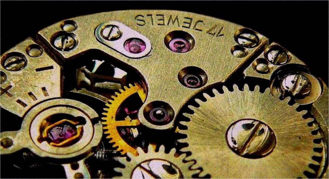 Notre horloge interne peut-elle expliquer des mécanismes de mémorisation ?