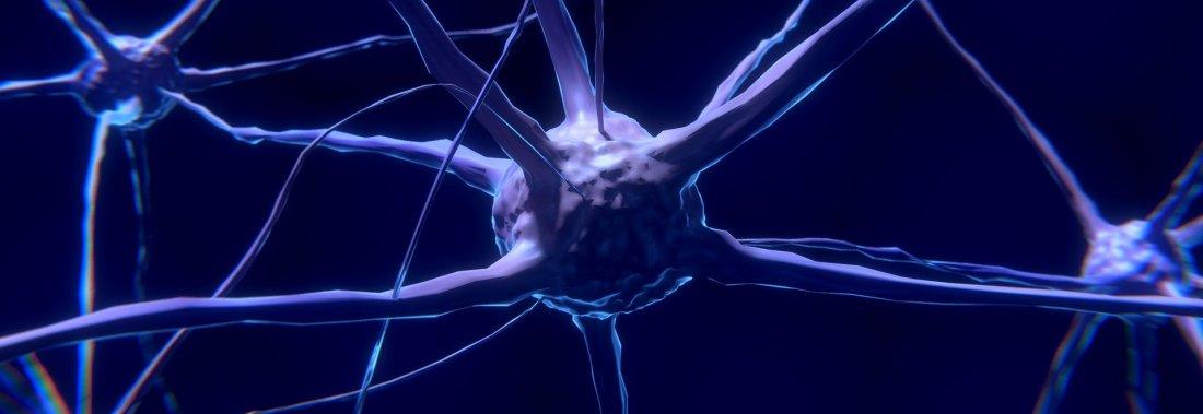 200 types de neurones différents pour notre cerveau