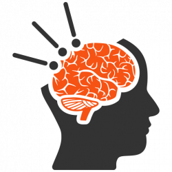 cerveau2 1