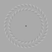 Si vous avancez et reculez votre tête, la spirale semble bouger !